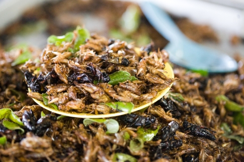 Fried cricket with green onions.  I actually ate this...it's pretty tastey:)